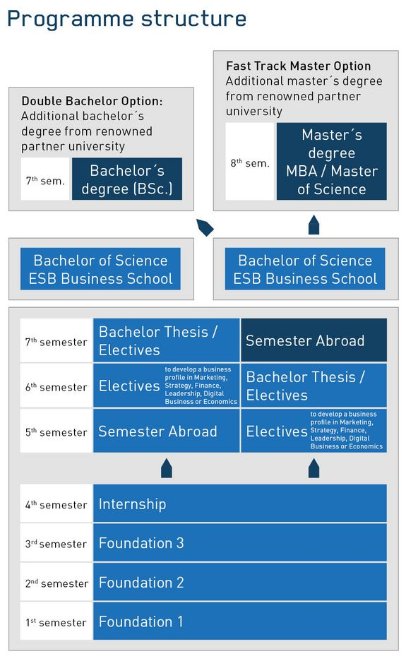 International Business Degree >> Programme Structure Content Bachelor Of Science